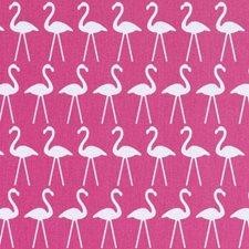 294937 42492 93 Flamingo by Robert Allen