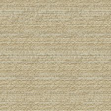 Beige/Grey Ethnic Drapery and Upholstery Fabric by Kravet
