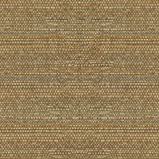 Earth Ethnic Drapery and Upholstery Fabric by Kravet