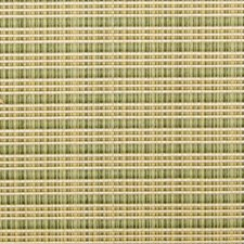 Cactus Strie Drapery and Upholstery Fabric by Duralee