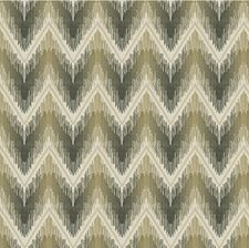 Platinum Ikat Drapery and Upholstery Fabric by Kravet