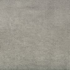 Grey Dots Drapery and Upholstery Fabric by Kravet