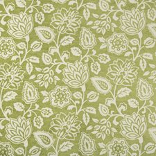 White/Green Botanical Drapery and Upholstery Fabric by Kravet