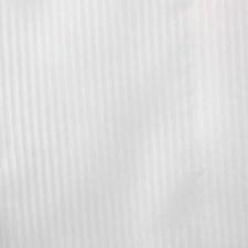 350556 51260 284 Frost by Robert Allen