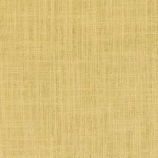 360004 DK61160 774 Marigold by Robert Allen