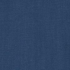 366725 DK61430 99 Blueberry by Robert Allen