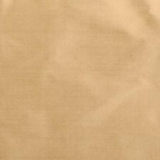 370024 89188 264 Goldenrod by Robert Allen