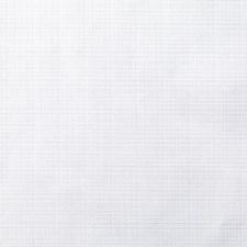 376061 DK61566 81 Snow by Robert Allen