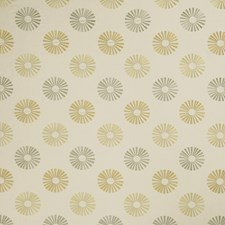 Lemon Zest Embroidery Drapery and Upholstery Fabric by Trend
