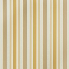 Cashew Stripes Drapery and Upholstery Fabric by Trend