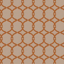 Burnt Orange Embroidery Drapery and Upholstery Fabric by Trend