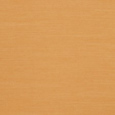 Sunset Solid Drapery and Upholstery Fabric by Trend