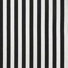 510351 DW16298 12 Black by Robert Allen