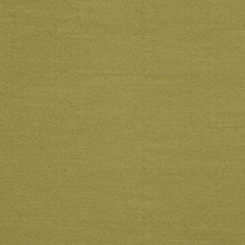 Fern Solid Drapery and Upholstery Fabric by Trend