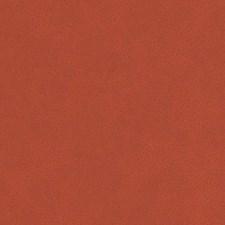 518756 DF16285 33 Persimmon by Robert Allen