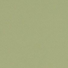 518776 DF16291 533 Celery by Robert Allen