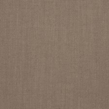 Bark Solid Drapery and Upholstery Fabric by Trend