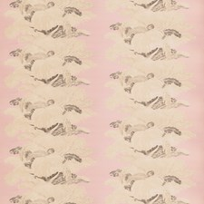Belle's Nose Novelty Drapery and Upholstery Fabric by Vervain