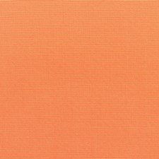 Tangerine Drapery and Upholstery Fabric by Sunbrella