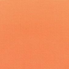 Tangerine Drapery and Upholstery Fabric by Sunbrella