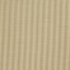 Thyme Stripes Drapery and Upholstery Fabric by Trend