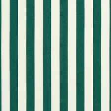 Forest Green Drapery and Upholstery Fabric by Sunbrella