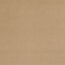 Peyote Texture Plain Drapery and Upholstery Fabric by Trend