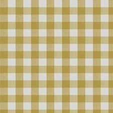 Citron Check Drapery and Upholstery Fabric by Stroheim