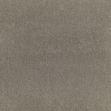 Moleskin Drapery and Upholstery Fabric by Schumacher