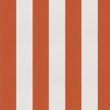 Mandarin Stripes Drapery and Upholstery Fabric by Trend