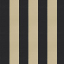Pirate Stripes Drapery and Upholstery Fabric by Trend