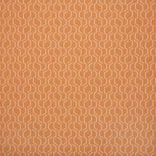 Apricot Drapery and Upholstery Fabric by Sunbrella