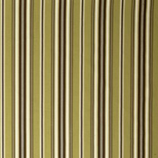 Kiwi Print Pattern Drapery and Upholstery Fabric by Trend