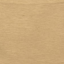 Amber Solid Drapery and Upholstery Fabric by Trend