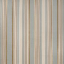 Robins Egg Stripes Drapery and Upholstery Fabric by Trend