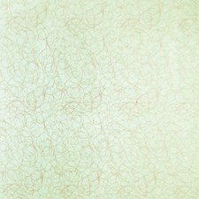 Honeydew Embroidery Drapery and Upholstery Fabric by Trend