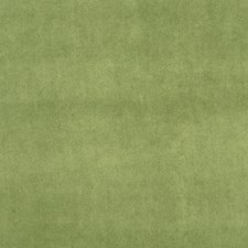 Grass Solid Drapery and Upholstery Fabric by Trend