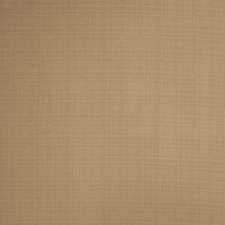Earth Check Drapery and Upholstery Fabric by Trend