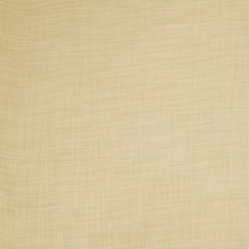 Barley Solid Drapery and Upholstery Fabric by Trend