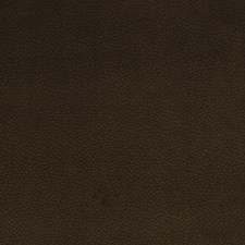 Seal Brown Animal Drapery and Upholstery Fabric by Trend