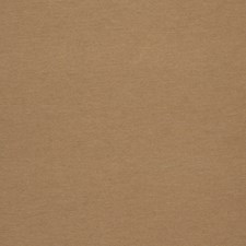 Clay Solid Drapery and Upholstery Fabric by Trend