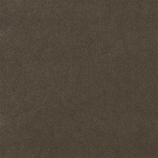 Sandstone Solid Drapery and Upholstery Fabric by S. Harris