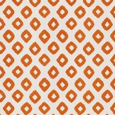 Kumquat Embroidery Drapery and Upholstery Fabric by Stroheim