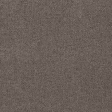 Fossil Solid Drapery and Upholstery Fabric by Trend