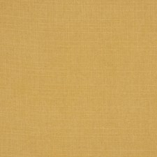Gold Solid Drapery and Upholstery Fabric by Trend