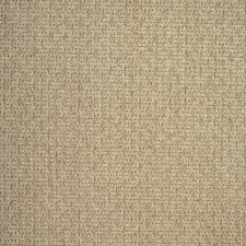 Mocha Drapery and Upholstery Fabric by Greenhouse
