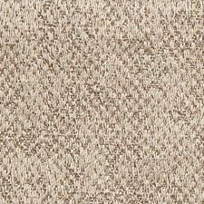 Taupe On Gray Drapery and Upholstery Fabric by Scalamandre