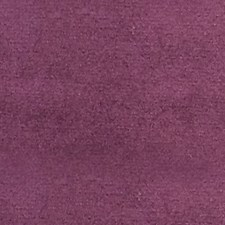 Deep Violet Drapery and Upholstery Fabric by Scalamandre