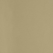Taupe/Beige/Brown Solids Drapery and Upholstery Fabric by Kravet