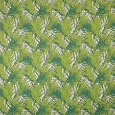 Peridot Drapery and Upholstery Fabric by Silver State